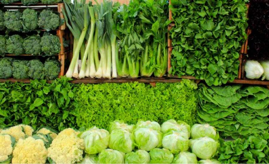 seleccion de verduras verde